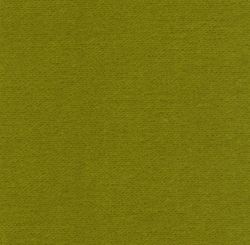 Franklin Velvet - Lime - SWATCH - 6