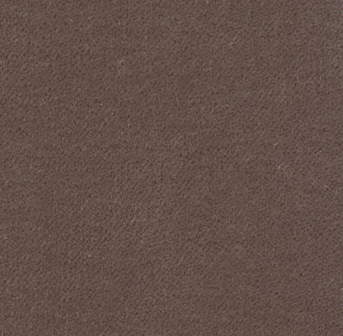 Franklin Velvet * - Platinum - SWATCH - 4