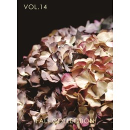 Volume14