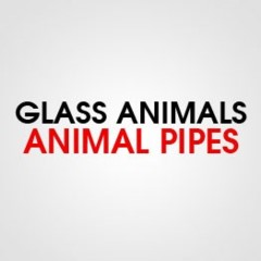 GLASS ANIMAL PIPE