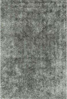 CARRCG-01ST003656