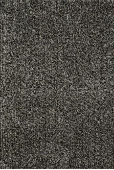 CARRCG-02ZW00160S