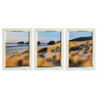 DUNE GRASS AND BEACH I,2,3