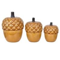 Ocorn Boxes