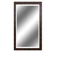 Large Reflection 4