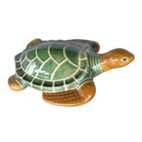Nile Turtle