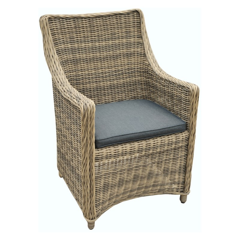 Veranda Arm Chair(Indoor/Outdoor)W002
