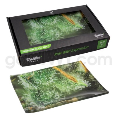 V Syndicate 5x7in Small Glass Rolling Tray- Trichome Jungle