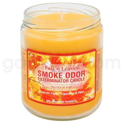 Smoke Odor Exterminator 13oz Candle Fall'n Leaves