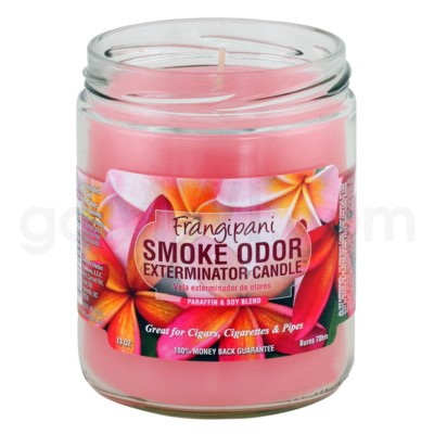 Smoke Odor Exterminator 13oz Candle Frangipani