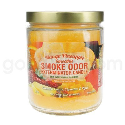 Smoke Odor Exterminator 13oz Candle Mango Pineapple Smoothie