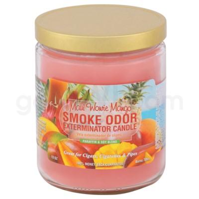 Smoke Odor Exterminator 13oz Candle Maui Wowie Mango