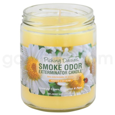 Smoke Odor Exterminator 13oz Candle Picking Daisies