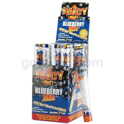 Juicy Jay's- Paper Cones- Blueberry 2pk 24ct/bx
