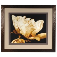 BUTTERCREAM MAGNOLIA  2