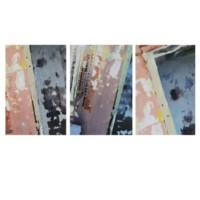 Study Ni Texture Triptych
