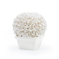 Boston Round Boxwood Topiary, White